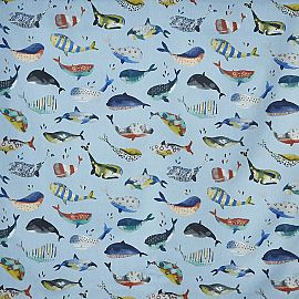 Whale pacific blauw