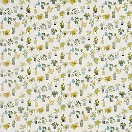 Potplants 652